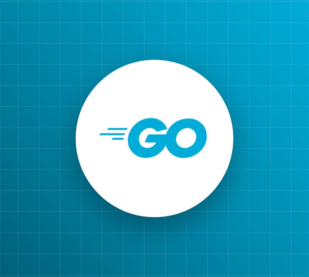 TinyGo: Good Things Come in Small Packages