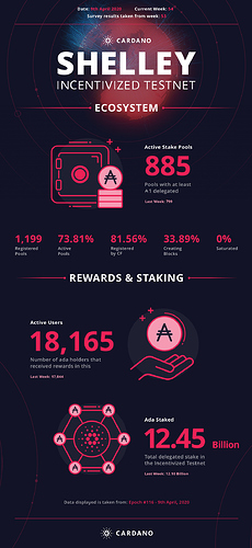 shelley_incentivized_testnet_infographic_Week54@2x