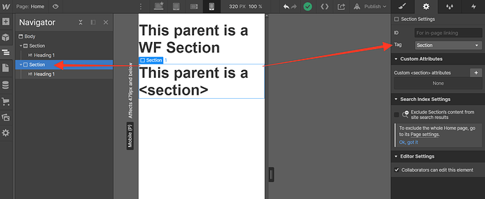 Webflow - Section section