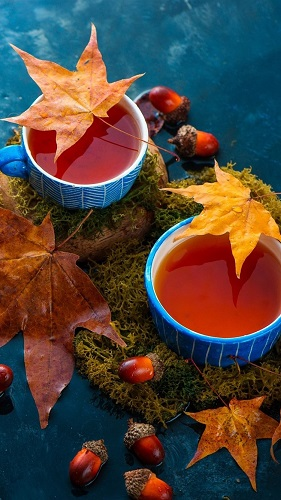 000-281-Two-cups-of-tea-maple-leaves-water-nuts