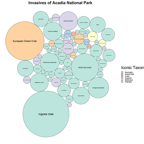 invasives_of_Acadia_National_Park