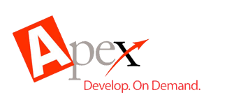 Apex Language Vulnerabilities and Overview