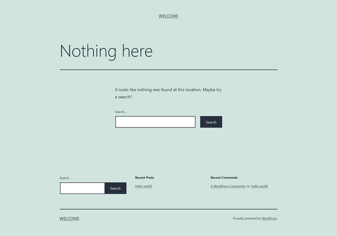 Screenshot_2021-05-26 Page not found – Welcome