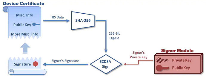 The certificate TBS data is hashed via SHA-256 to create a 256-bit digest. This digest, along with the signer's private key, is used as input to the ECDSA Sign operation to create the certificate signature. This signature is then appended to the TBS data.