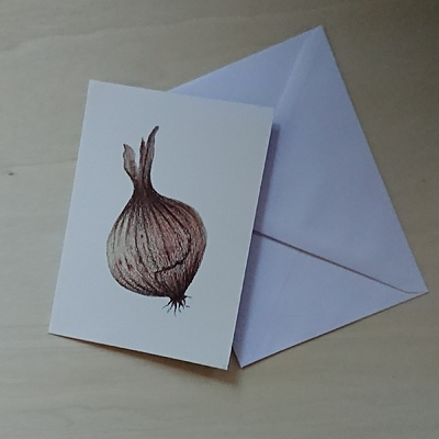 onion pencil drawing handmade card by Anne Fontenoy