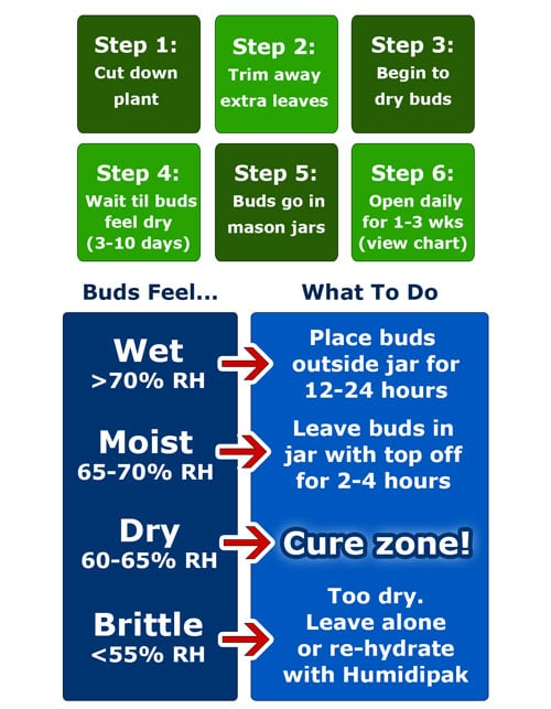 cannabis-harvest-drying-curing-cheat-sheet-small-version