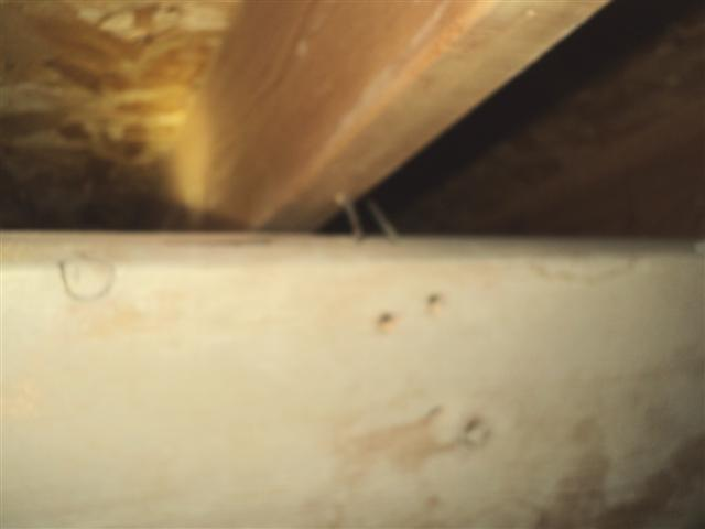 shifted rafter support 5 (Small).jpg