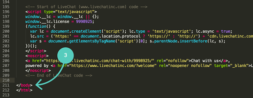 Paste-LiveChat-code-snippet-before-the-body-tag_2x-1