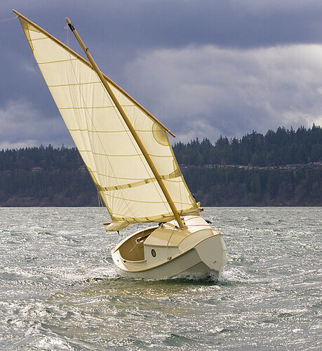 SCAMPsailboat