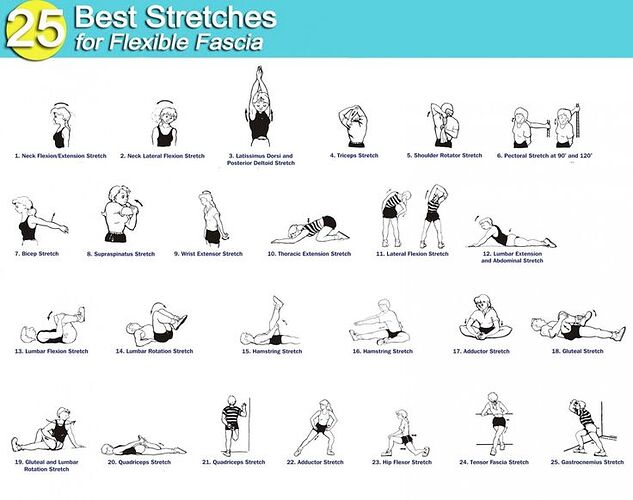 25 best stretches for flexible fascia