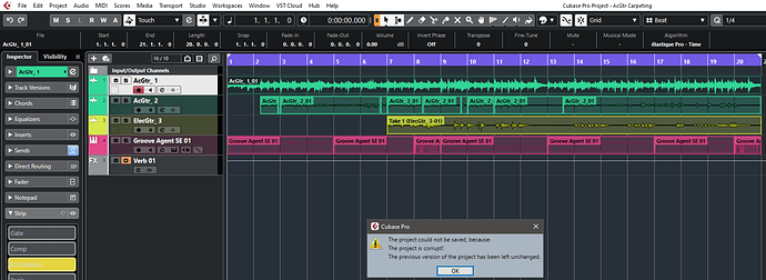 Cubase 11-Project corrupted.PNG
