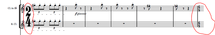 Dorico Bug Large_Time_Signatures.PNG
