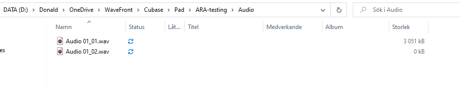 04_recording.png
