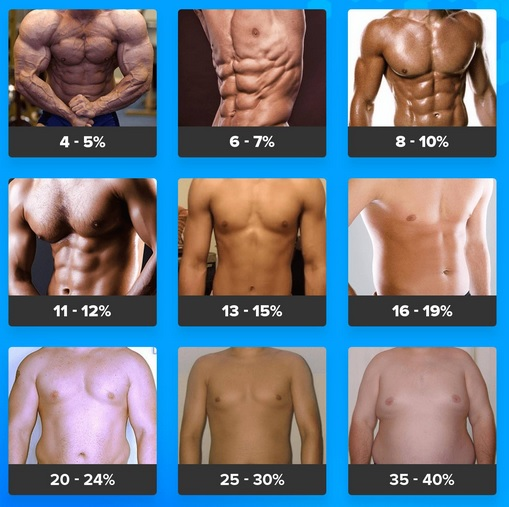 Bodyfat-Pictures