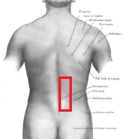 Lower Back Pain (Right Side Only) - Injuries and Rehab ... - photo#6