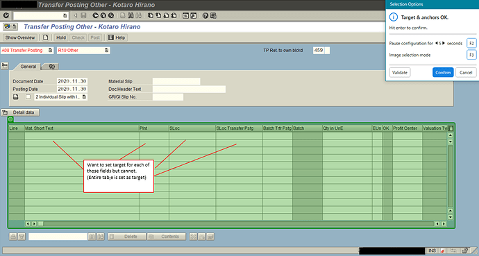 20201130-01_Cannot set target on a specific field in SAP