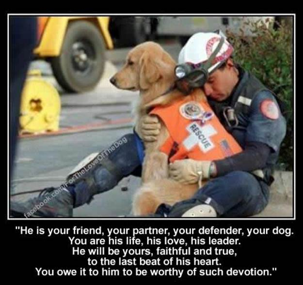 he-is-your-friend-your-defender-your-dog
