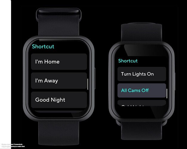 Screenshot of Wyze Watch